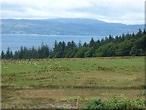 NR9277 : Farmland near Drums Farm by Thomas Nugent