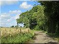 TQ5563 : Bower Lane, near Eynsford by Malc McDonald