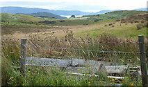 NR9276 : Farmland near Drum Cottage by Thomas Nugent