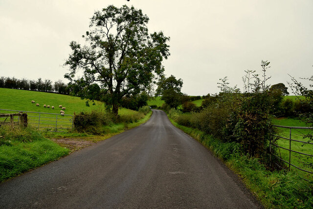 Augher Point Road, Moylagh