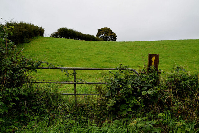 Gate to field, Moylagh