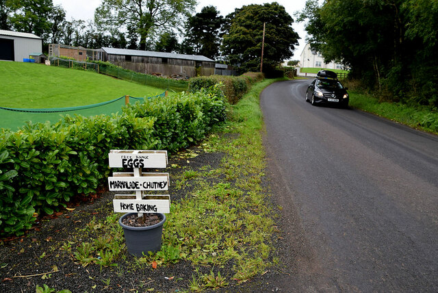 Sign for eggs, etc along Augher Point Road, Moylagh