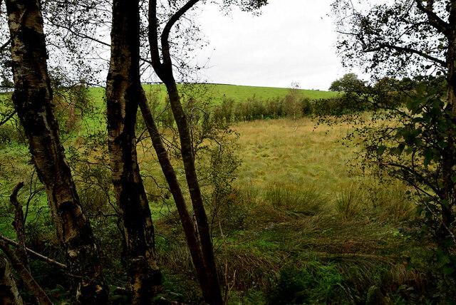 Rough ground, Moylagh