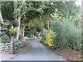 TQ6463 : David Street, Harvel, near Meopham by Malc McDonald
