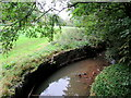 SP0479 : The River Rea passing through Kings Norton Nature Reserve by Roy Hughes