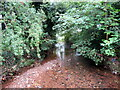 SP0278 : The River Rea near Middlemore Road, Northfield by Roy Hughes