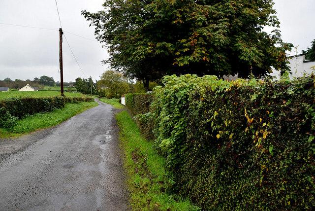 Legacurry Road