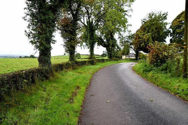 Bend along Legacurry Road