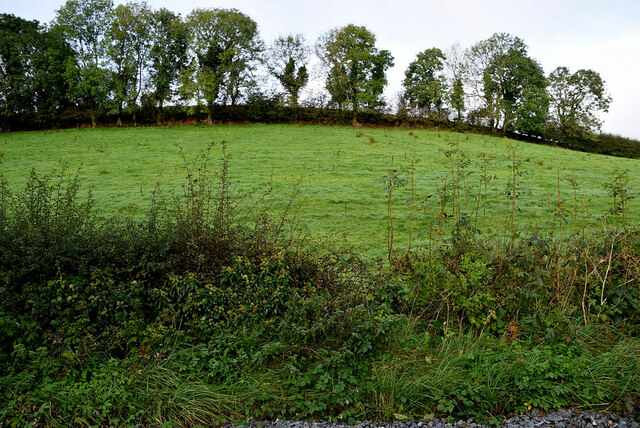 A low hill, Ardatinny