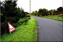 H4259 : Tonnagh Road, Ardatinny by Kenneth  Allen