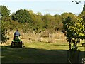 SK5637 : Mowing the community orchard by Alan Murray-Rust