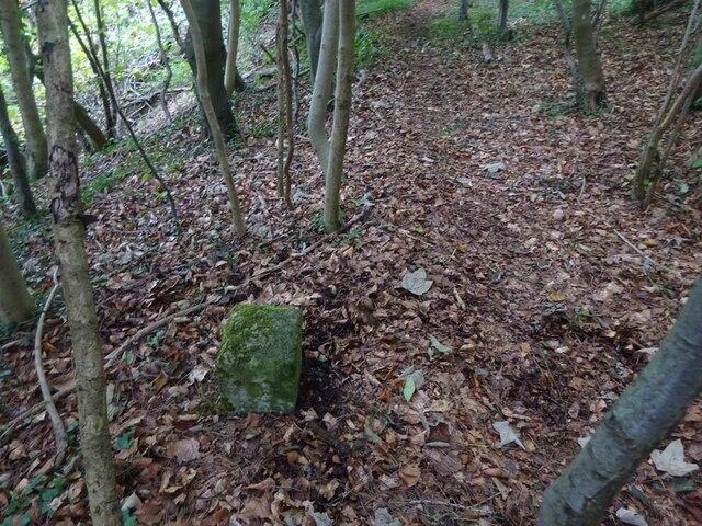 Boundary Stone, Peak Plantation, Birdlip