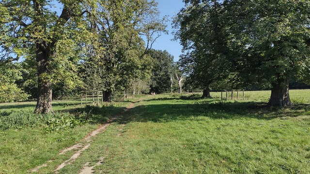 Path to Chessetts Wood Road