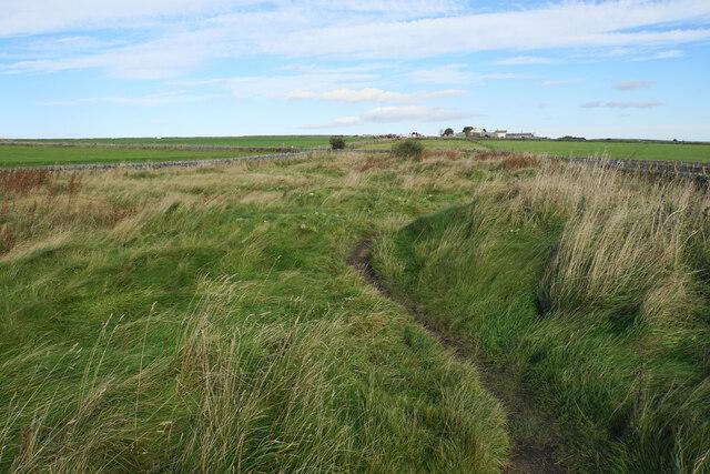 Bridleway towards Fivewells Farms