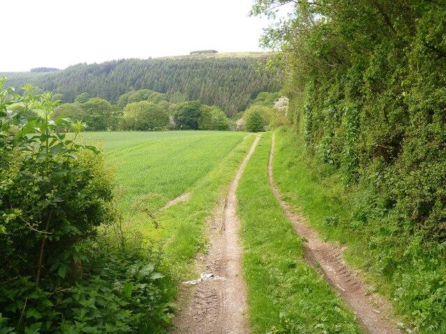 Wanderings around the Welsh/English border [112]
