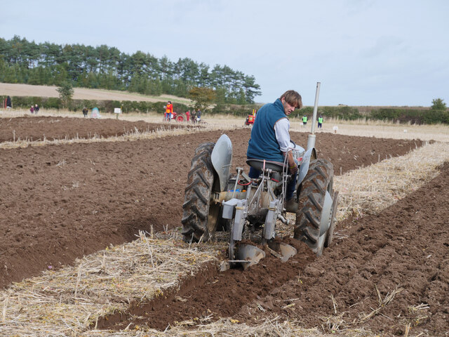 A 'little grey Fergie' and two furrow plough