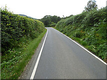 NR9276 : The B8000 road by Thomas Nugent
