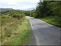 NR9472 : The B8000 road by Thomas Nugent