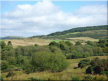 NR9571 : Course of the Craignafeoch Burn by Thomas Nugent
