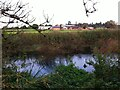 SP3069 : Looking across the River Avon towards New Farm, Blackdown by Alan Paxton