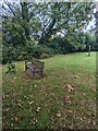 ST4599 : Memorial bench in the village churchyard, Wolvesnewton by Jaggery