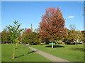 SE3054 : West Park. Harrogate by Malc McDonald