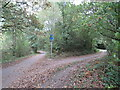SE3156 : Paths in woodland, Harrogate by Malc McDonald