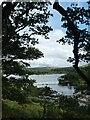 SX5568 : Burrator Reservoir by David Smith