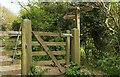 SX6346 : Gate and path junction, Wiscombe by Derek Harper