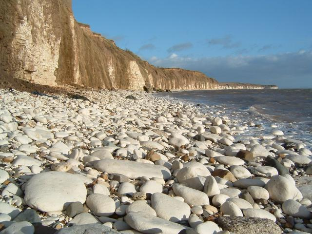 Chalk Pebble beach at Sewerby, Near Bridlington.