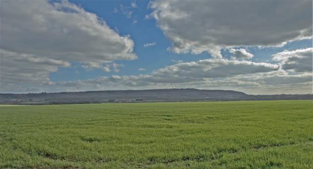 Wavendon Fields.
