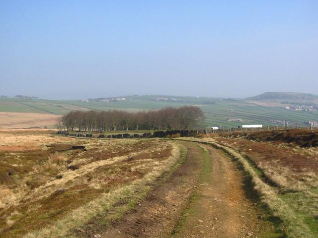 Meltham Moor