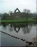 SE0754 : Bolton Abbey ruins by Paul Baxter