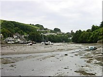 SX5547 : Noss Mayo from Bridgend by Penny Mayes