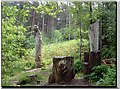 SE8790 : Adderstone Rigg by Dorcas Sinclair