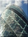 TQ3381 : The Gherkin, City of London by Fan Yang