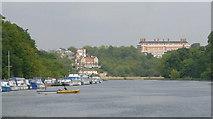 TQ1773 : River Thames near Richmond by Martin Clark