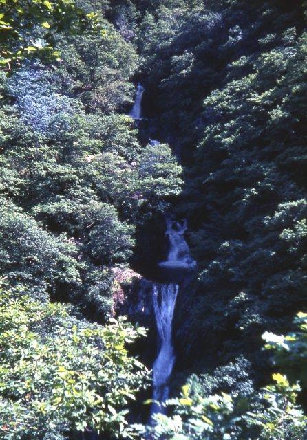 'Jacob's Ladder'  Waterfalls at Devil's Bridge