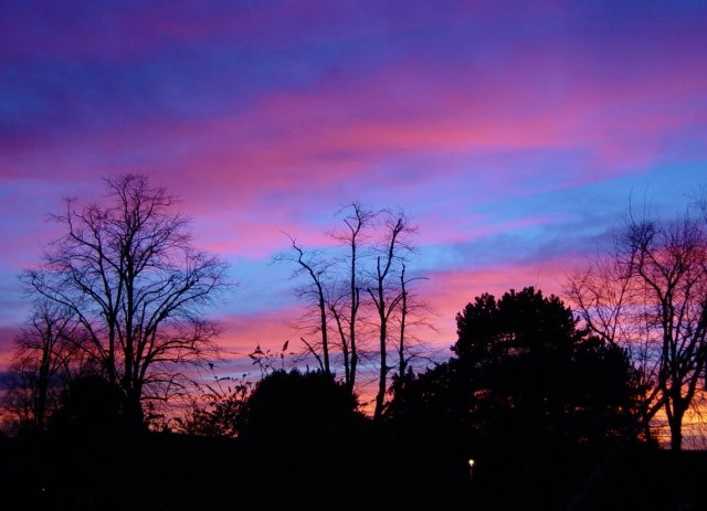 Sunset over Osterley - Xmas Day 2002