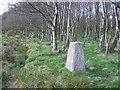 NS9394 : Gartenkeir Trigpoint by Richard Webb