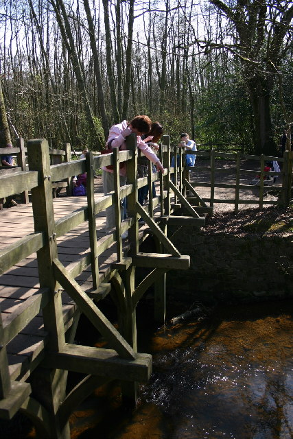 Pooh Sticks Bridge, Ashdown Forest