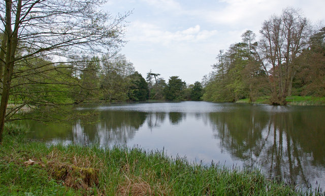 Part of the Woburn Abbey park