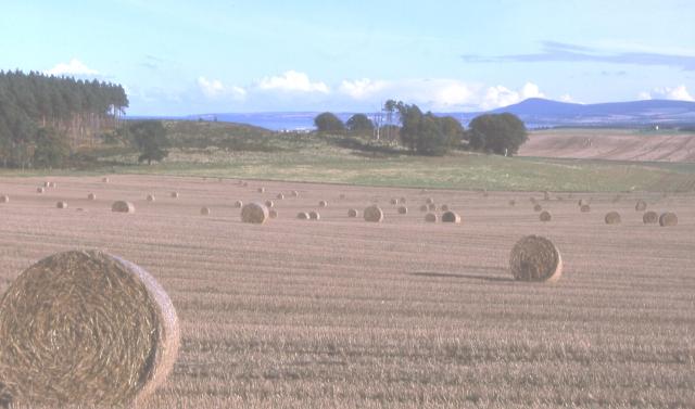 Fields near Corbiewell