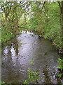 SO9759 : Shell Brook. by Richard  Dunn