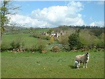 NY8013 : Augill Castle, Brough, Cumbria by David Medcalf