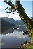 NS1488 : View from Coylet Inn Loch Eck Cowal by paul birrell