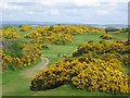 NT2569 : Braid Hills by Richard Webb
