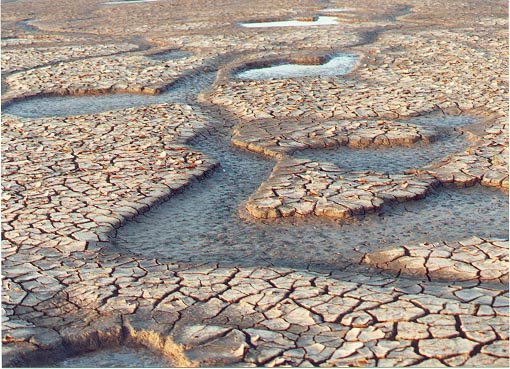Dried mud creeks on the shores of the Wash