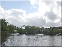 TQ1667 : Thames Ditton Island by steve