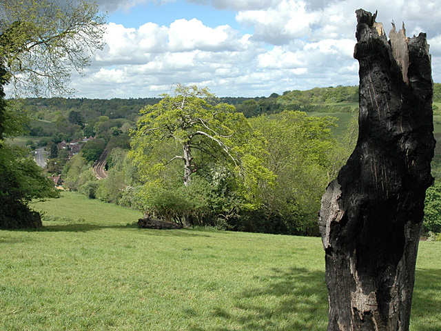 Chipstead Valley